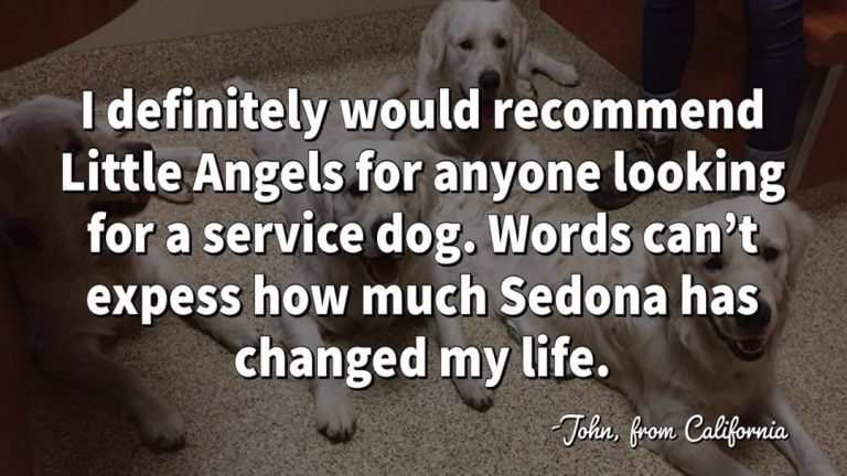 little-angels-service-dogs-john-testimonial