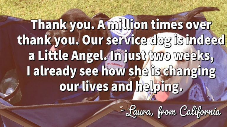little-angels-service-dogs-laura-testimonial