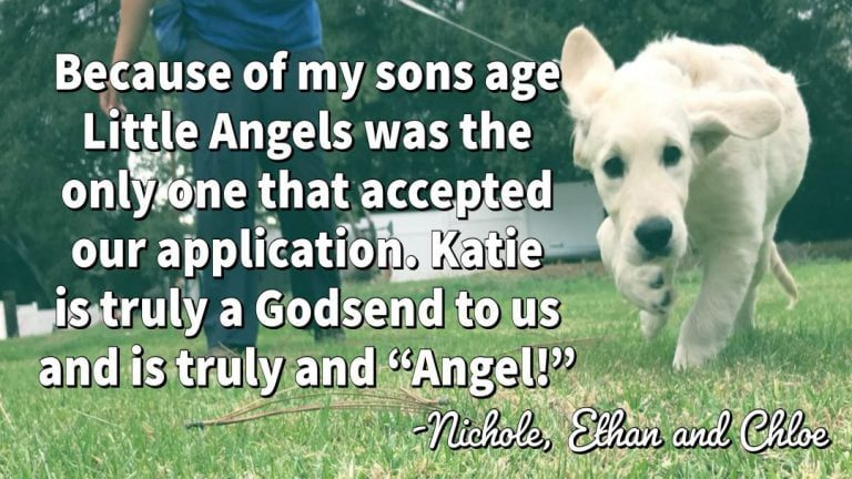 little-angels-service-dogs-nicole-testimonial