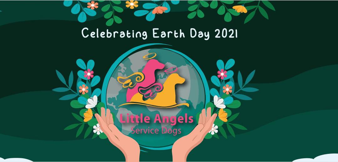 Eco-Friendly Dog Ownership: Celebrating Earth Day 2021
