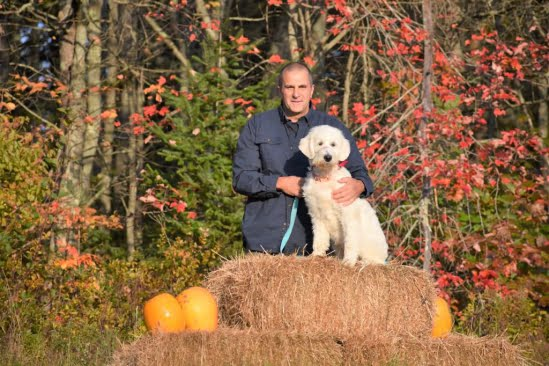 little-angels-service-dogs-get-involved-prison-program-correctional-facility-pumpkin-patch