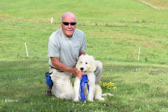 little-angels-service-dogs-get-involved-prison-program-inmate-laboradoodle