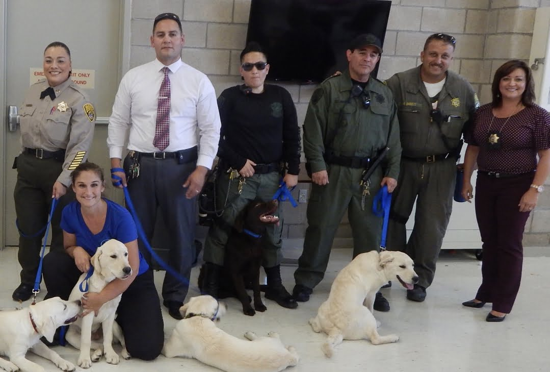 little-angels-service-dogs-get-involved-prison-program-officers-and-inmates-large