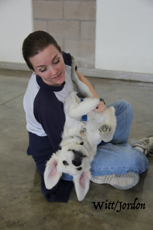 little-angels-service-dogs-get-involved-prison-program-trainer-with-dog-silly