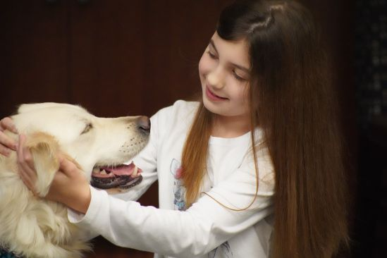 autism service dog little angels