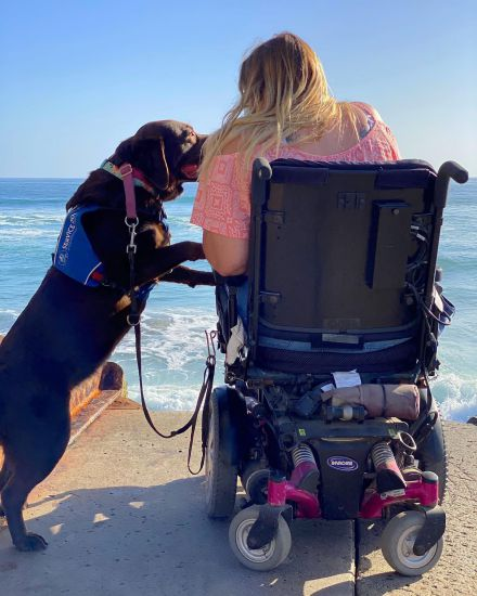 little-angels-service-dogs-our-services-mobility-assistance-beach-side-help