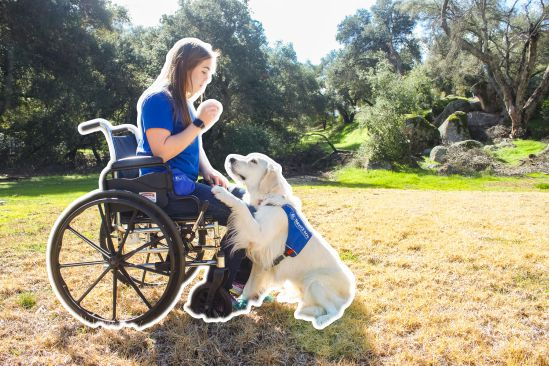 little-angels-service-dogs-our-services-mobility-assistance-ruffwear-LASD